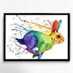 illustrations rainbow rabbit par shana patry